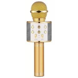 Microfone c/ Coluna Bluetooth Karaoke Wireless - Dourado